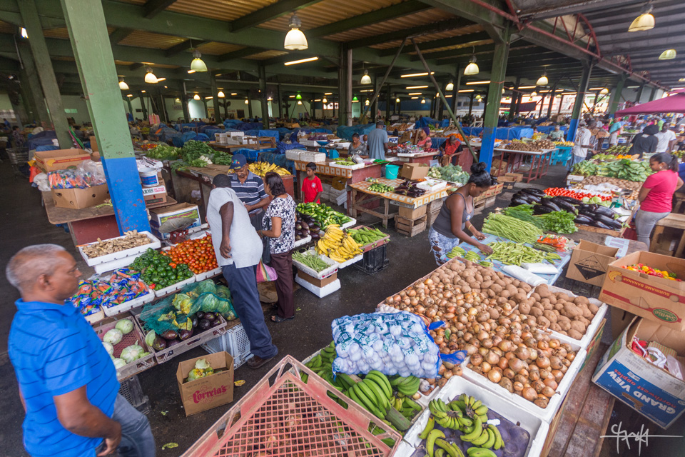 Image Caption: Layout of the Chaguanas Market. November 13th, 2015.—Click to read this article.