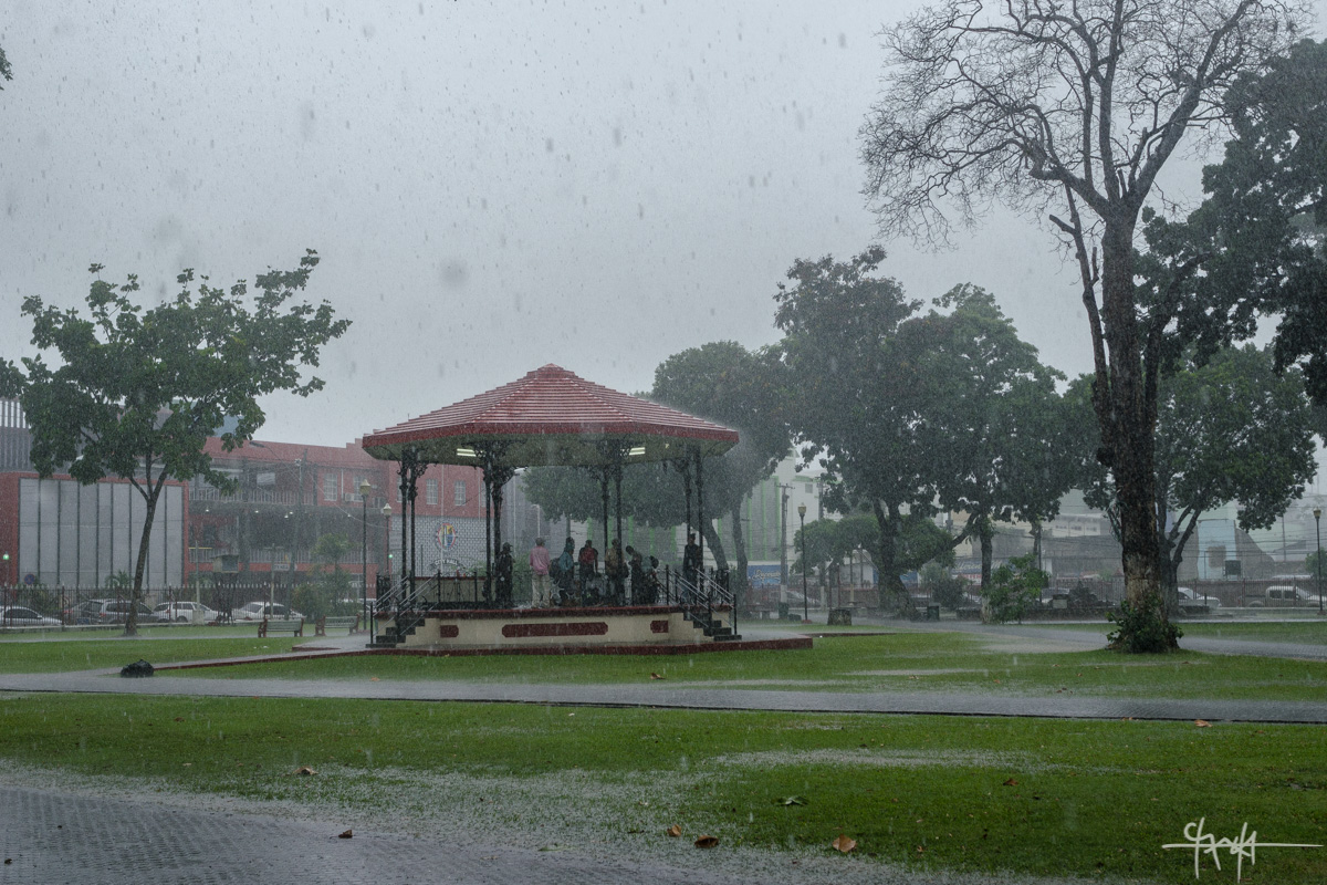 Under the Bandstand